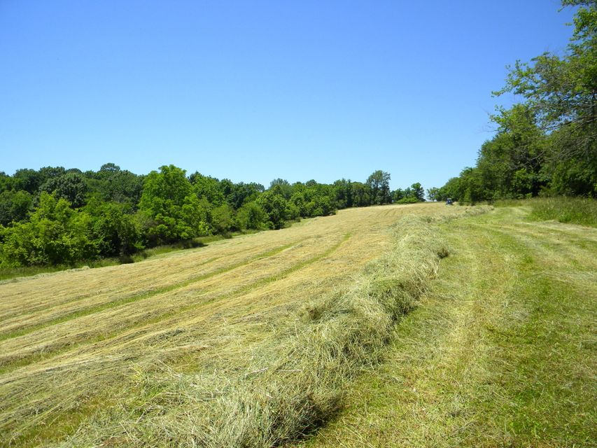 Land for Sale at S Hwy 44 Shelbyville, Kentucky 40065 United States