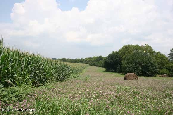 Additional photo for property listing at 773 Drennon  New Castle, Kentucky 40050 United States