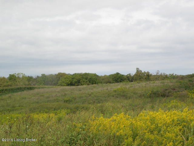 Land for Sale at 1 tr 1 Vigo Bagdad, Kentucky 40003 United States