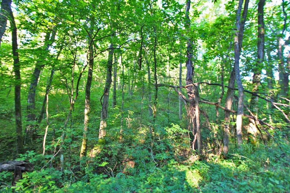 Land for Sale at 2 Palmer 2 Palmer Mount Eden, Kentucky 40046 United States