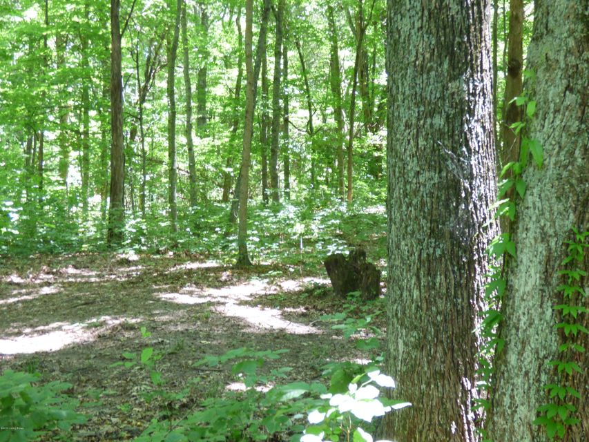Additional photo for property listing at Dutchmans Creek Dutchmans Creek Mount Washington, Kentucky 40047 United States