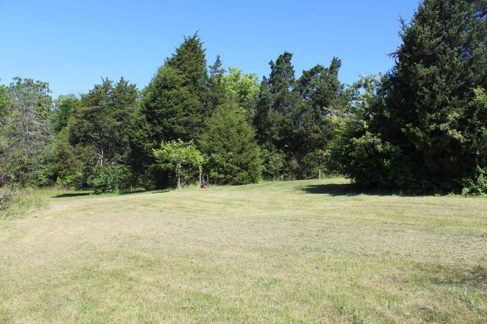 Additional photo for property listing at WOLF PEN  Pendleton, Kentucky 40055 United States