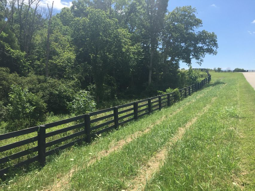 Additional photo for property listing at 101 L'Esprit Farm  Pendleton, Kentucky 40055 United States