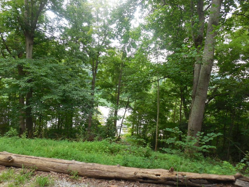 Additional photo for property listing at 6 Meredith Lakeview Estates Road  Bee Spring, Kentucky 42207 United States