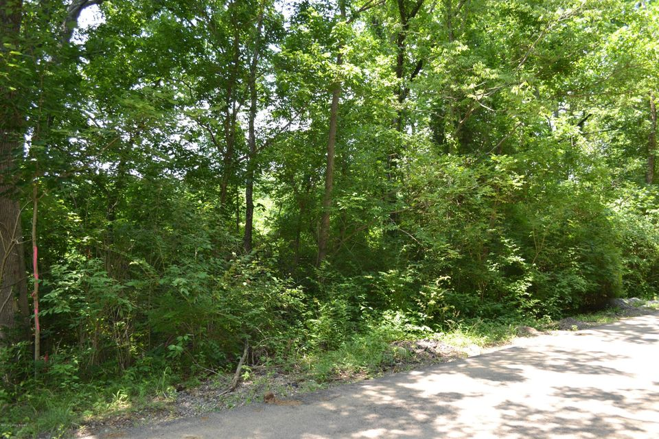 Land for Sale at 8220 Stout Louisville, Kentucky 40299 United States