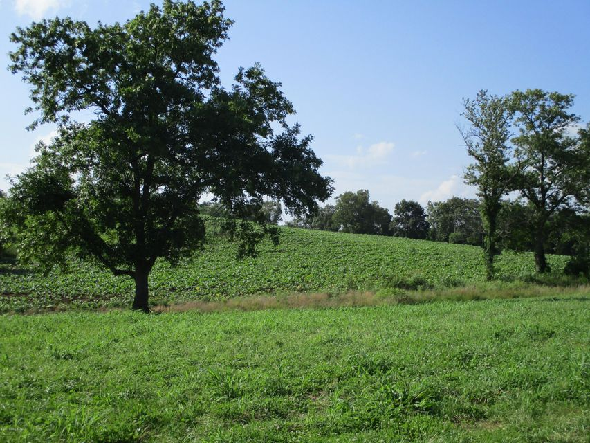 Land for Sale at 2234 New Hope New Haven, Kentucky 40051 United States