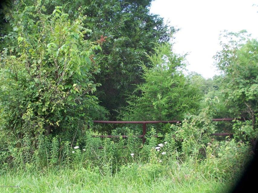 Land for Sale at Richmond Milton, Kentucky 40045 United States