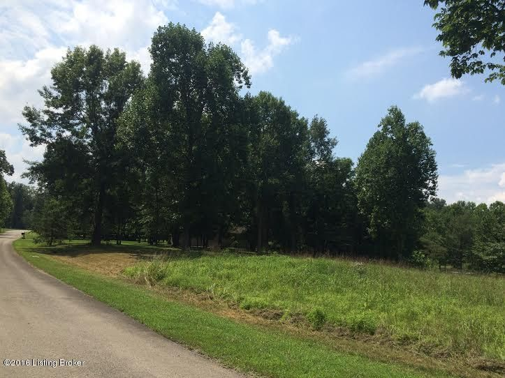 Land for Sale at 1005 High Pine Boston, Kentucky 40107 United States