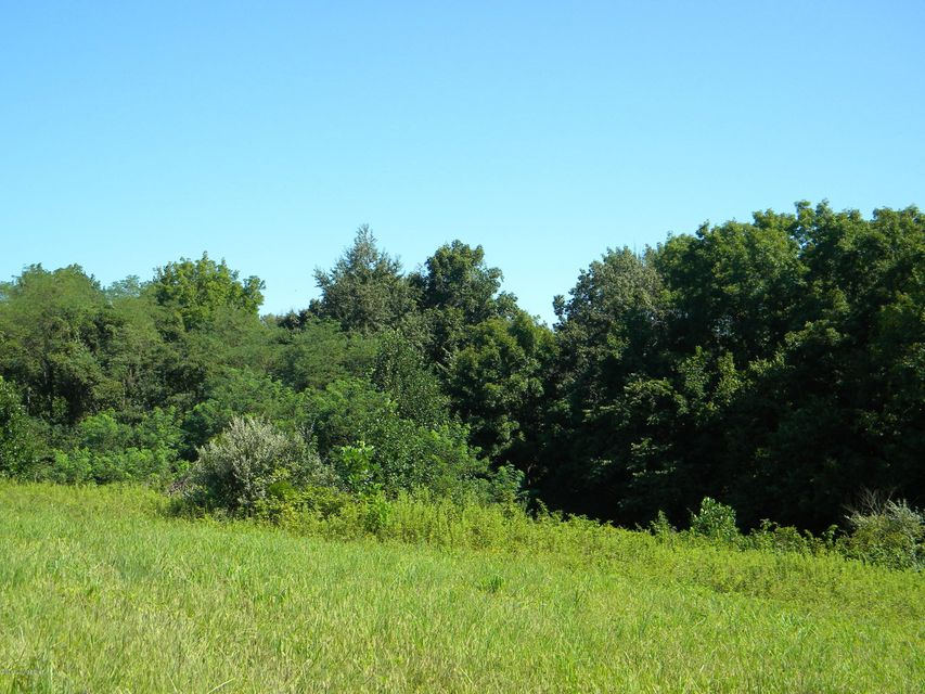 Land for Sale at 41 Indian Springs Trc 41 Indian Springs Trc Shelbyville, Kentucky 40065 United States