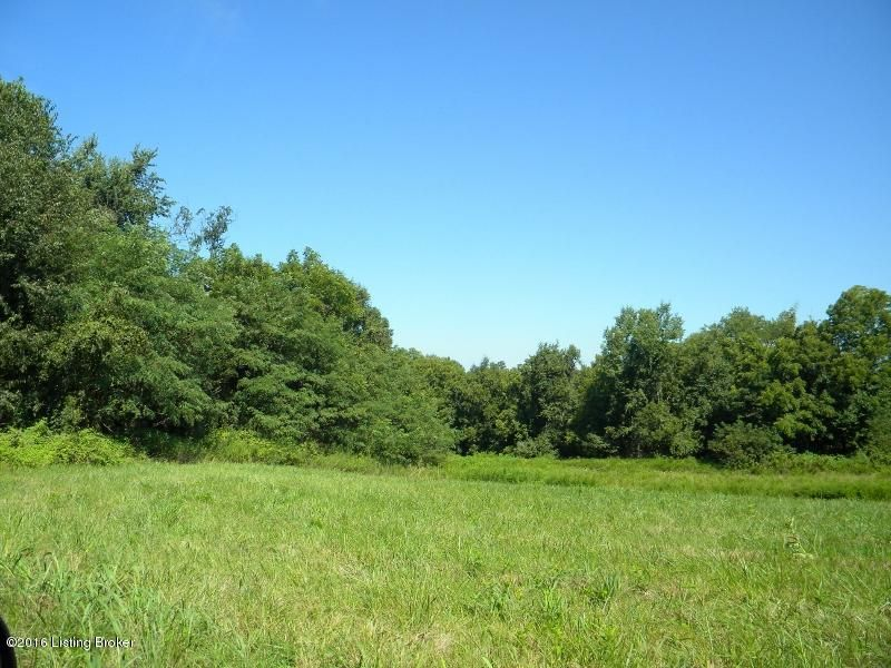 Land for Sale at 61 Indian Springs Trc Shelbyville, Kentucky 40065 United States