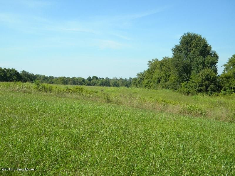 Land for Sale at 68 Painted Leaf South 68 Painted Leaf South Shelbyville, Kentucky 40065 United States