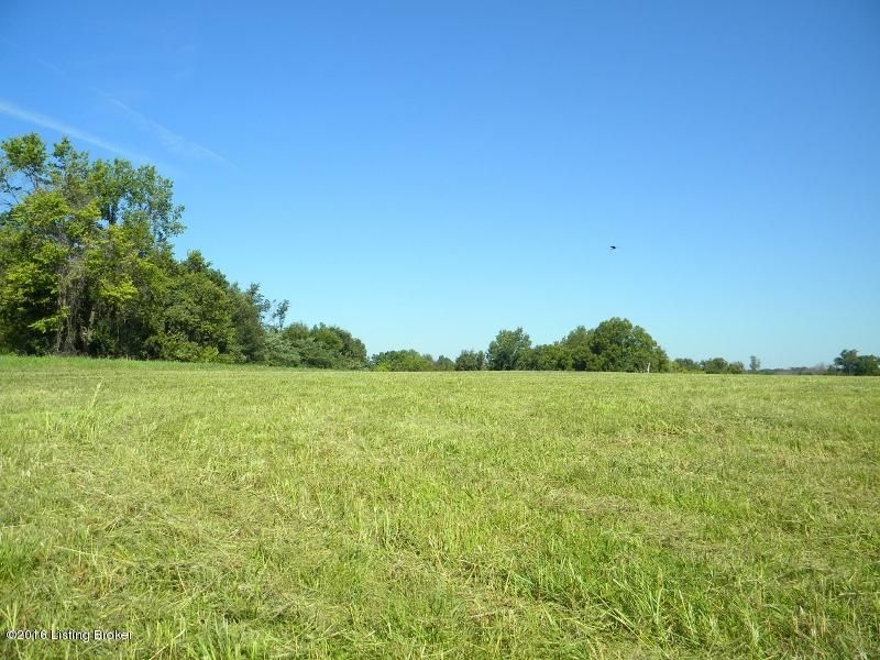Land for Sale at 69 S Painted Leaf Shelbyville, Kentucky 40065 United States