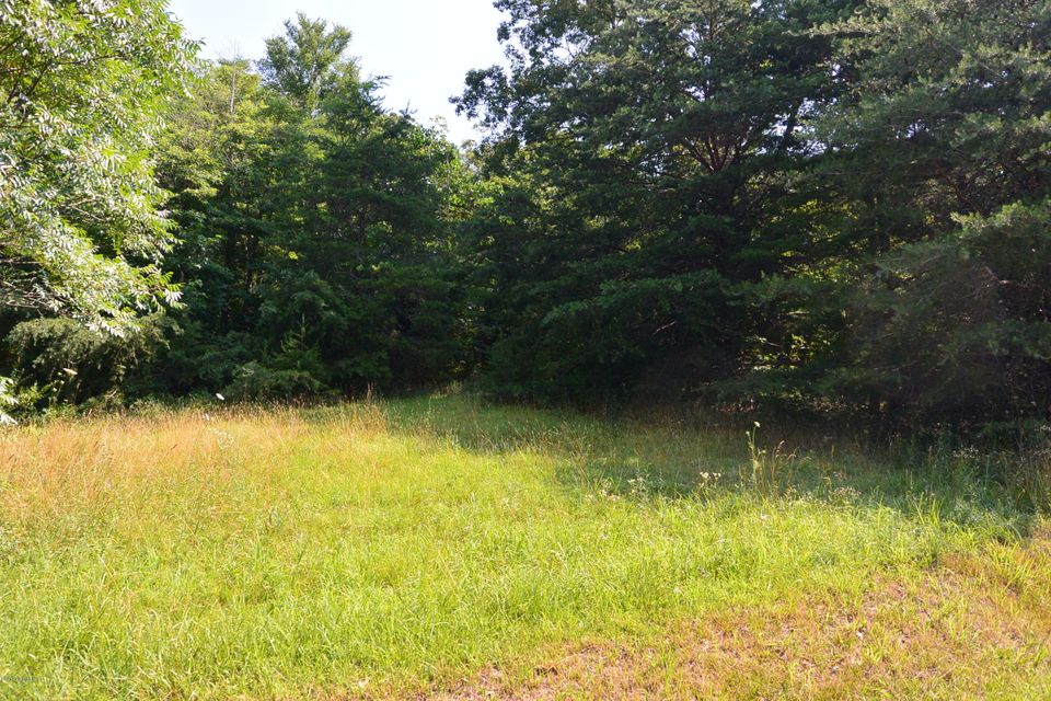 Land for Sale at 1 Lutheran Church 1 Lutheran Church Bardstown, Kentucky 40004 United States