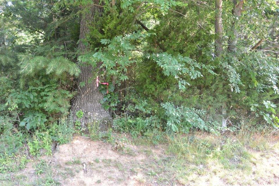 Additional photo for property listing at 1 Lutheran Church  Bardstown, Kentucky 40004 United States