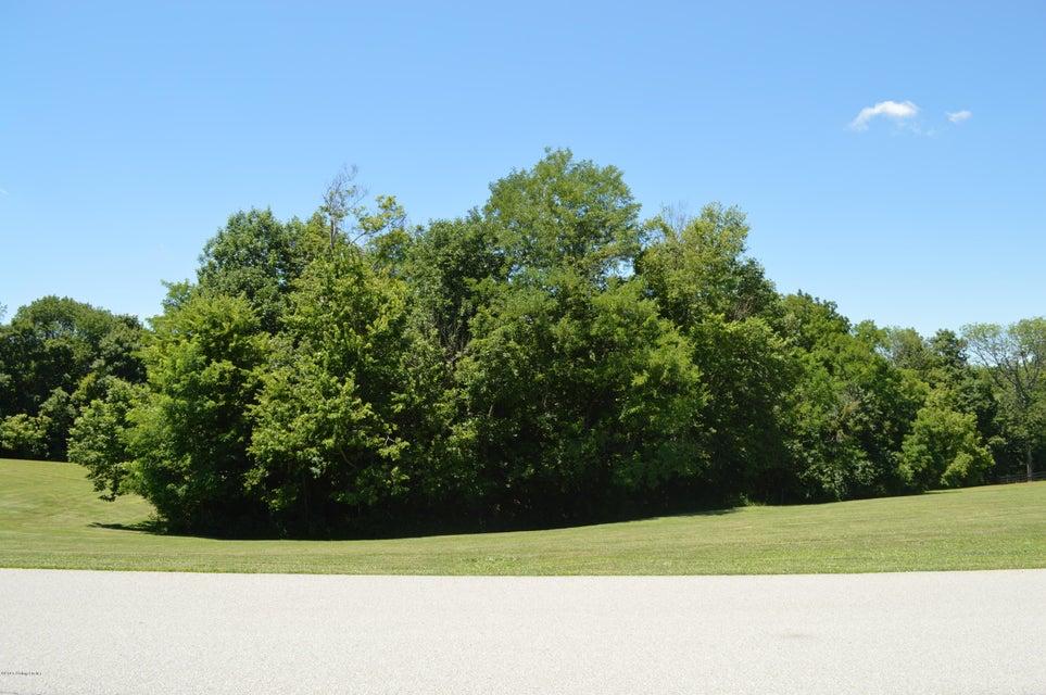 Land for Sale at 19 Flint Ridge Shelbyville, Kentucky 40065 United States