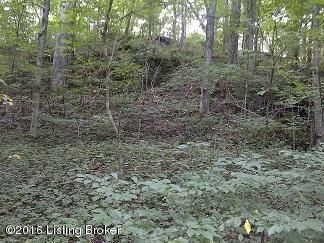 Additional photo for property listing at Tract 2 Bennetts  Bardstown, Kentucky 40004 United States