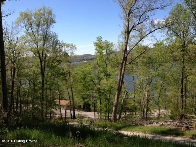 Additional photo for property listing at 1662 Robbin  Cub Run, Kentucky 42729 United States