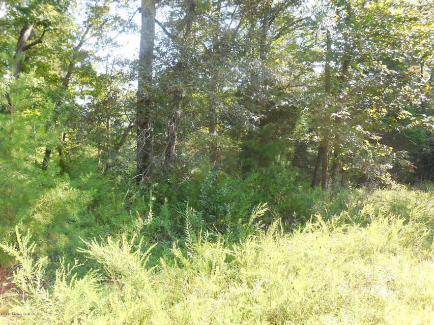 Additional photo for property listing at Decker  Clarkson, Kentucky 42726 United States