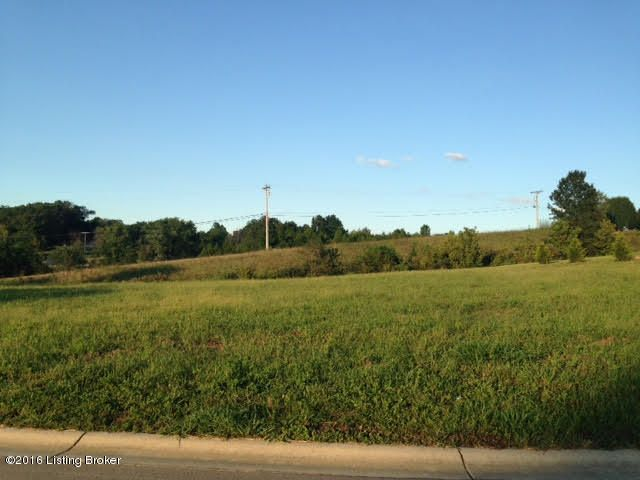 Land for Sale at 1 Windsor Taylorsville, Kentucky 40071 United States