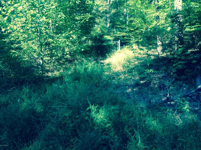 Land for Sale at Big Springs Big Springs Shepherdsville, Kentucky 40165 United States