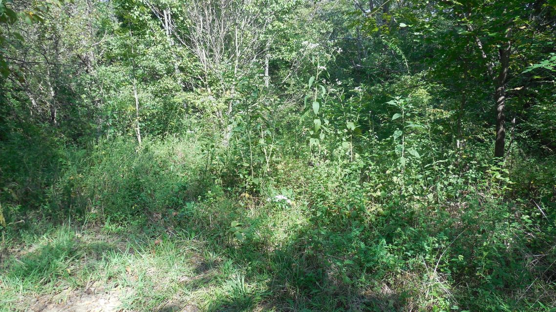 Additional photo for property listing at 2300-2301 Taylorsville  Taylorsville, Kentucky 40071 United States