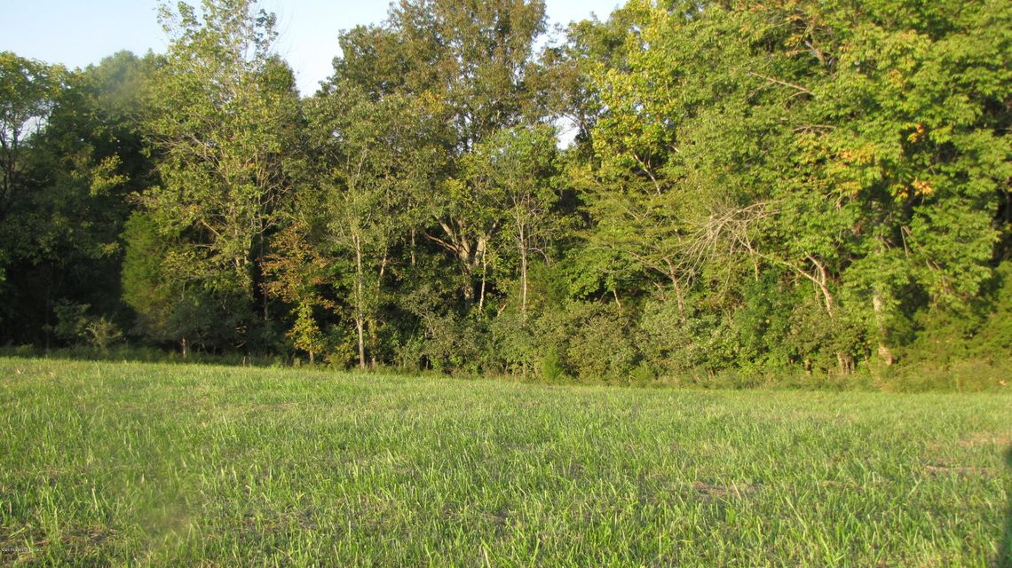 Land for Sale at 2008 Ashes Creek 2008 Ashes Creek Bloomfield, Kentucky 40008 United States