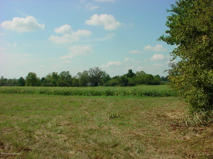 Additional photo for property listing at 499 Pleasureville Road  Pleasureville, Kentucky 40057 United States