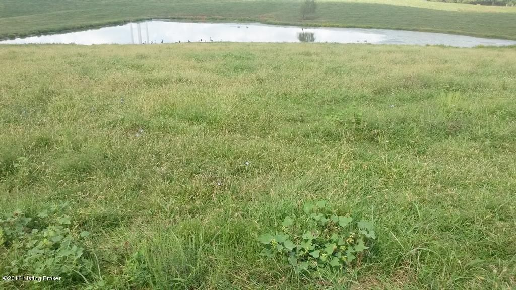 Land for Sale at 3530 Overlook Taylorsville, Kentucky 40071 United States