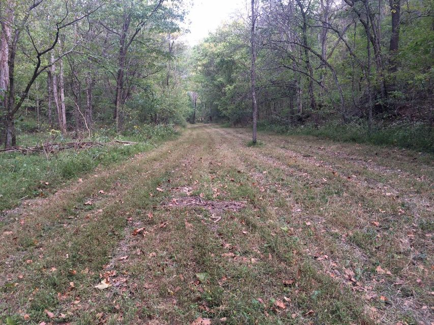 Additional photo for property listing at Lower Middle Creek Road  Bedford, Kentucky 40006 United States