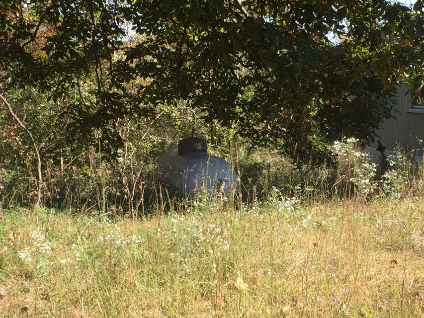 Additional photo for property listing at 2874 WATERSHED  Caneyville, Kentucky 42721 United States