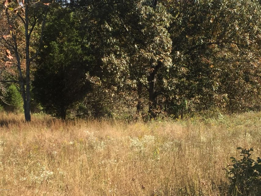 Land for Sale at 2874 WATERSHED Caneyville, Kentucky 42721 United States
