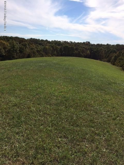 Land for Sale at 2917 GREENS CHAPEL Bloomfield, Kentucky 40008 United States