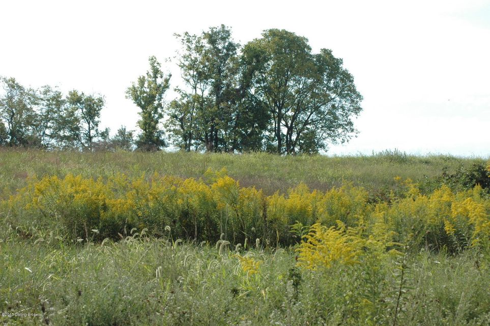 Land for Sale at 20 INDIAN SPRINGS 20 INDIAN SPRINGS Shelbyville, Kentucky 40065 United States