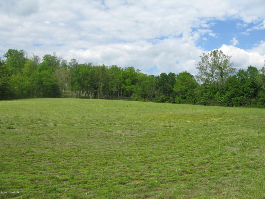 Land for Sale at 49 Patriots Landing 49 Patriots Landing Falls Of Rough, Kentucky 40119 United States