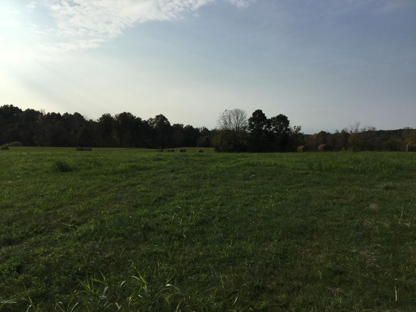 Additional photo for property listing at Carriageway  Taylorsville, Kentucky 40071 United States