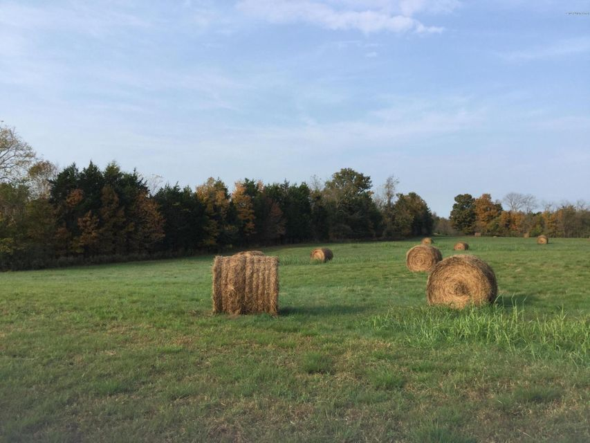 Land for Sale at Carriageway Taylorsville, Kentucky 40071 United States