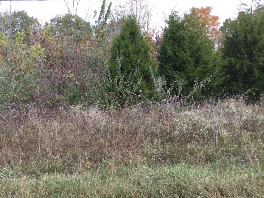 Land for Sale at 1 Hollow Hills Farm Mount Washington, Kentucky 40047 United States