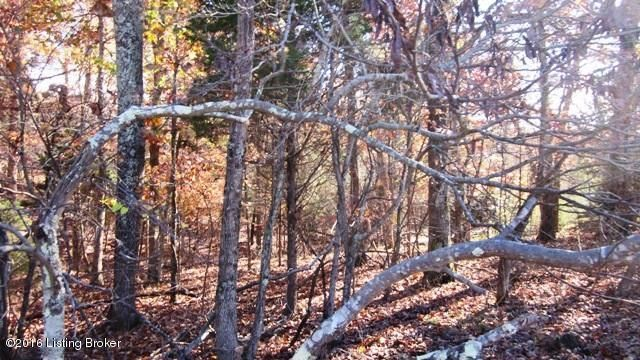 Additional photo for property listing at Lot #280 Woodview  Brandenburg, Kentucky 40108 United States