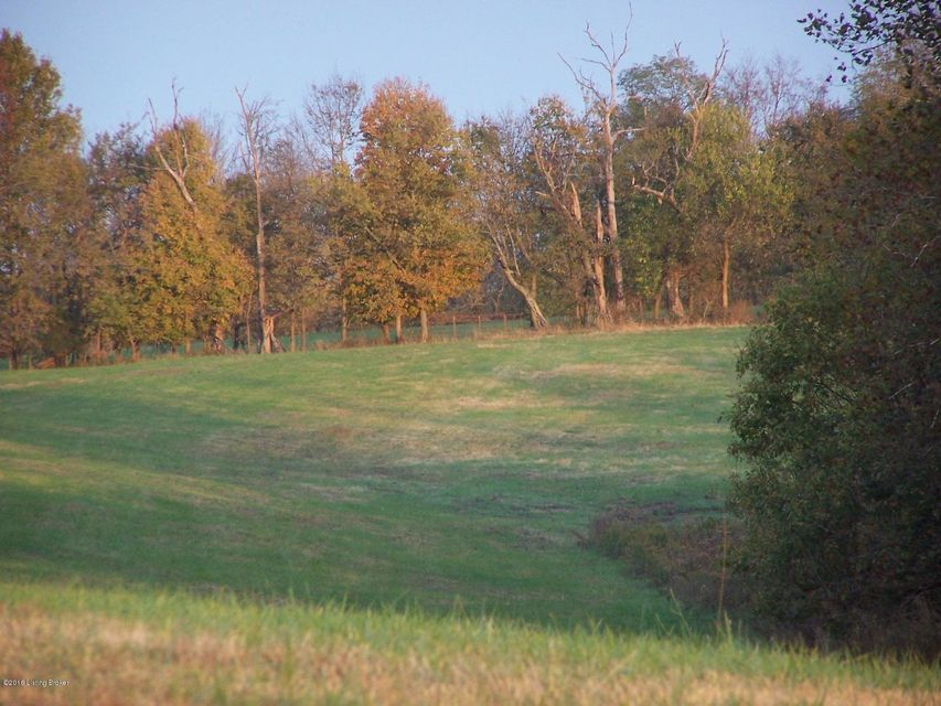 Additional photo for property listing at 2166 Buzzard Roost  Waddy, Kentucky 40076 United States