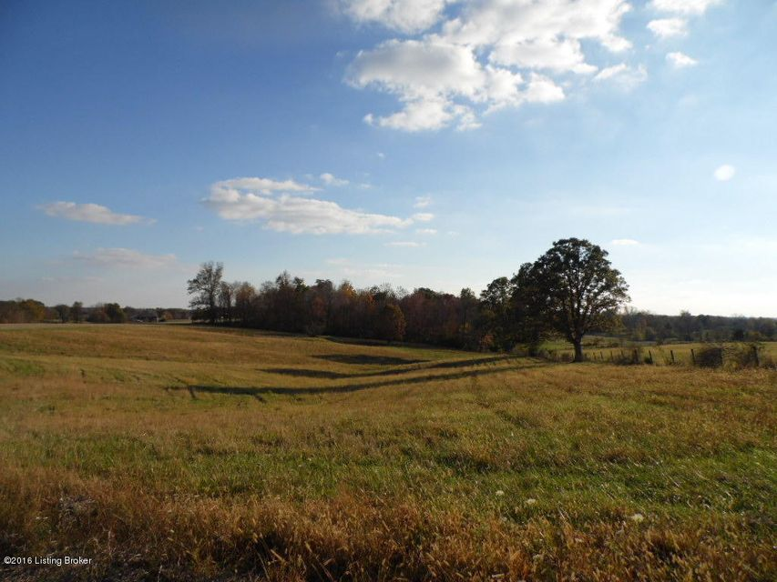 Land for Sale at 100 Acres Fox Creek Lawrenceburg, Kentucky 40342 United States