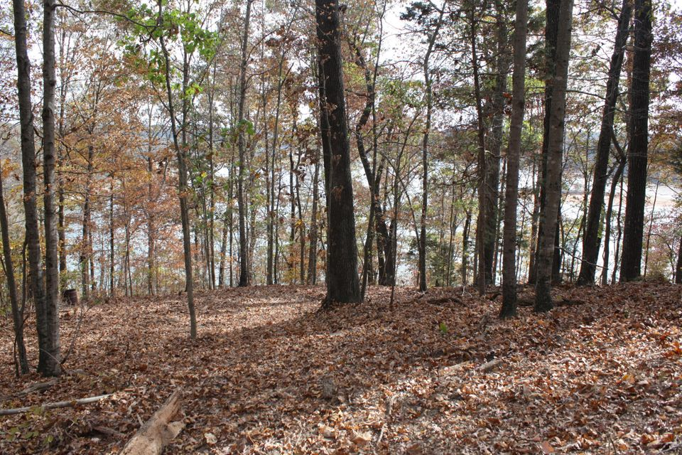 Land for Sale at 2 Cedar Point 2 Cedar Point Bee Spring, Kentucky 42207 United States
