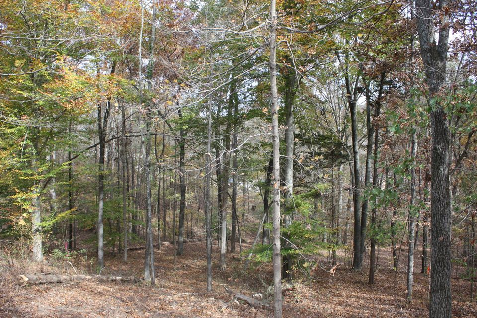 Additional photo for property listing at 2 Cedar Point 2 Cedar Point Bee Spring, Kentucky 42207 United States