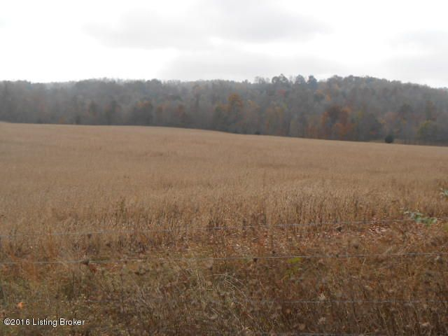 Land for Sale at 2280 Attilla Campbellsville, Kentucky 42718 United States