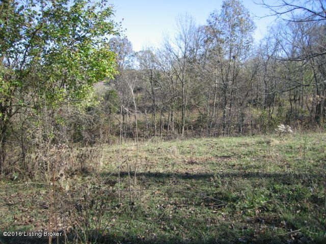 Land for Sale at Zimmerman Zimmerman Coxs Creek, Kentucky 40013 United States