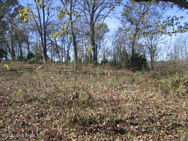 Additional photo for property listing at Zimmerman  Coxs Creek, Kentucky 40013 United States