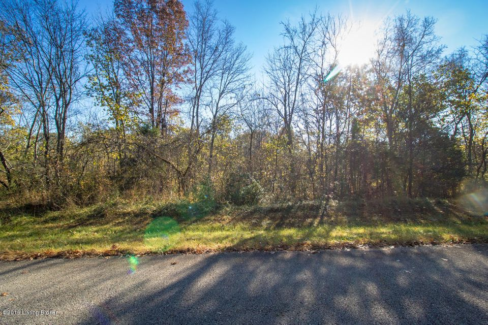 Land for Sale at Lot 55 Doe Run Taylorsville, Kentucky 40071 United States