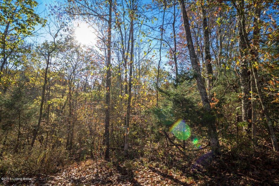 Additional photo for property listing at Lot 55 Doe Run Lot 55 Doe Run Taylorsville, Kentucky 40071 United States