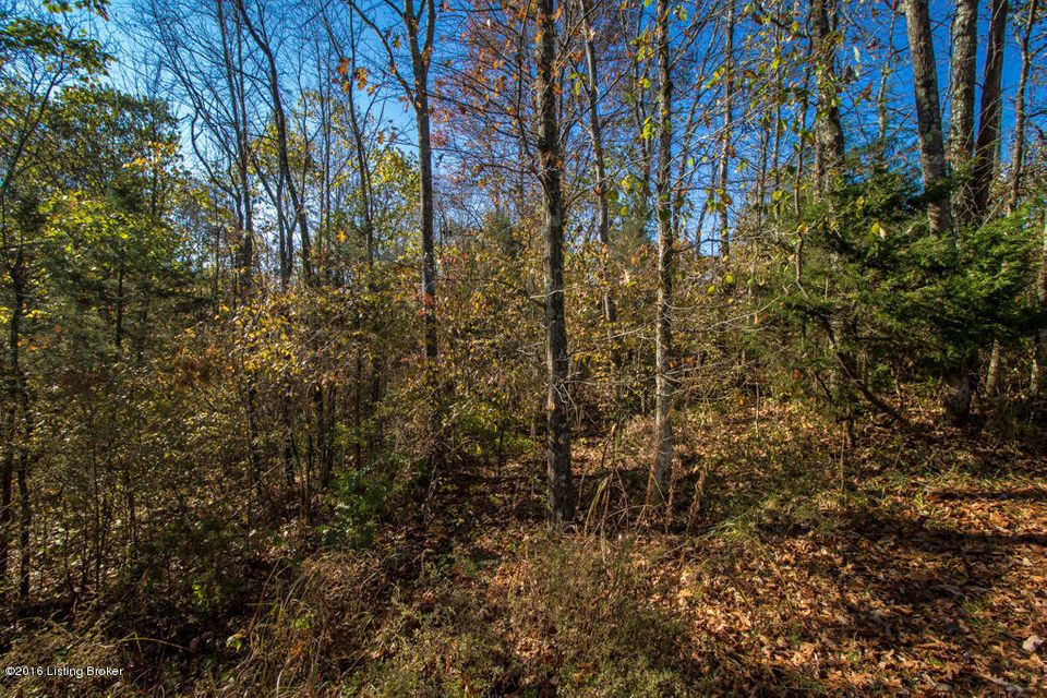 Additional photo for property listing at Lot 55 Doe Run  Taylorsville, Kentucky 40071 United States