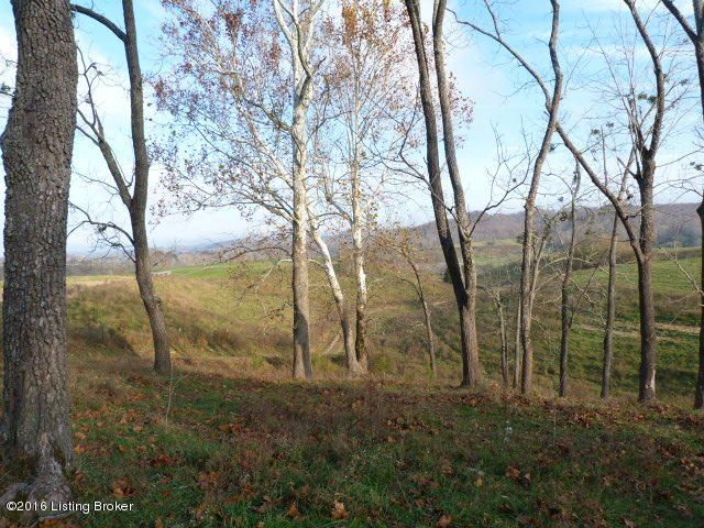 Land for Sale at 241 Pleasant Valley Church Bradfordsville, Kentucky 40009 United States