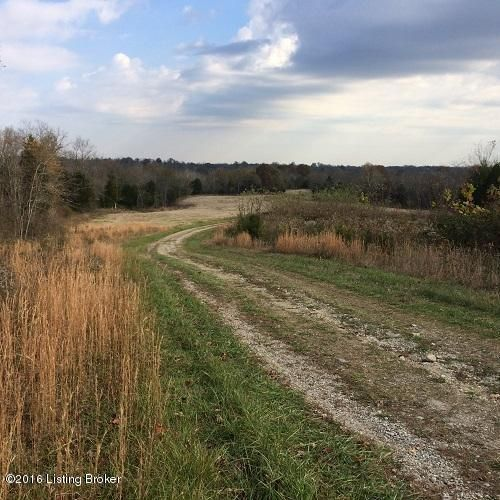 Land for Sale at 1100 Hwy 42 W 1100 Hwy 42 W Bedford, Kentucky 40006 United States